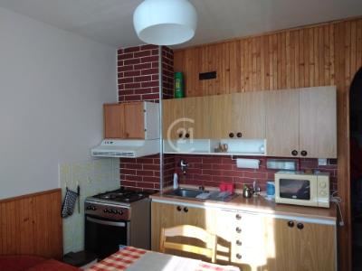 Na prenájom 2-izbový byt s loggiou na sídlisku 3