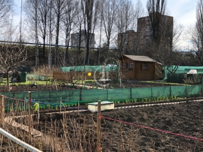 Záhrada v Poprade pri nemocnici